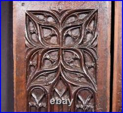 17th Century Pair of French Antique Gothic Revival Panels in Solid Oak Wood