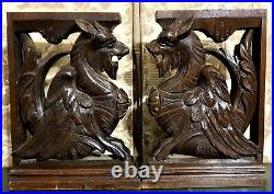 Pair dragon chimera carving corbel bracket Antique french architectural salvage